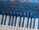 Vignoni Ravel II B 96 Bass Piano Accordion - The Accordion Lounge